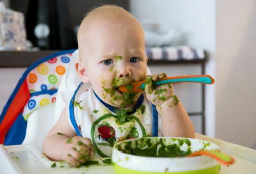 Süt Alerjisi Olan Bebekler İçin Kahvaltı