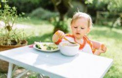 Bebeklerde Et Tüketimi, Hangi Etler Yenmeli?